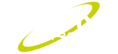 RSM GROUP